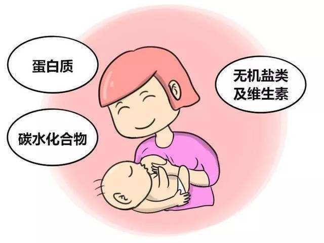 母乳到6个月没营养?还是24个月?