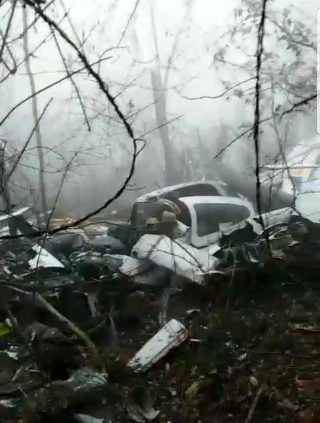 现场视频显示,坠机点位于山坡上的一处林地。受访者供图