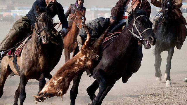 中东特有的男人游戏:在马背上争抢一只羊,一般人真不敢玩!