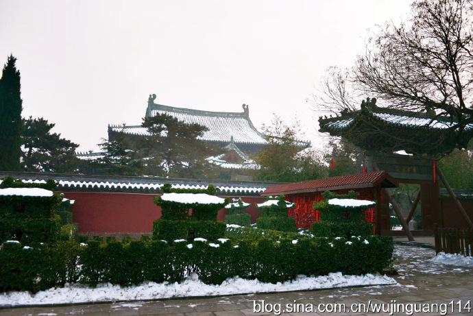摄影:春节前的河北正定隆兴寺(图)