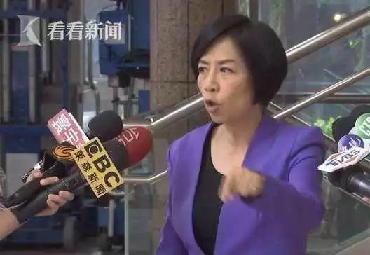 台湾名嘴黄智贤(原料图)
