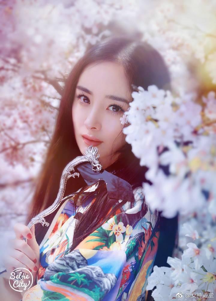 日本大片哪有_杨幂日本古风大片,樱花飘落,美人如画,真的非常惊艳.