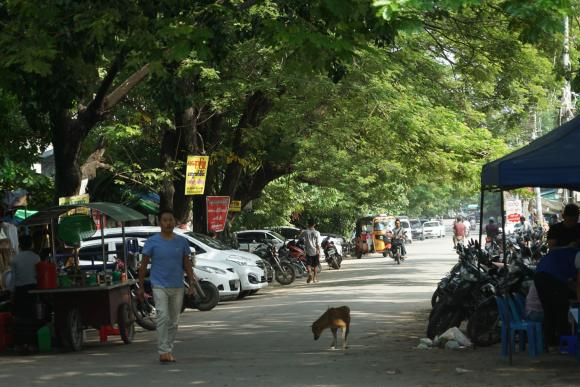 曾经的故都,缅甸如今的大城市,街头却依然藏着落后的慢生活