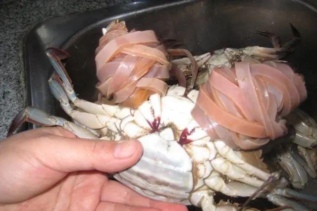 买的是绳还是螃蟹?过度包装的生意经,消费者可不想买单