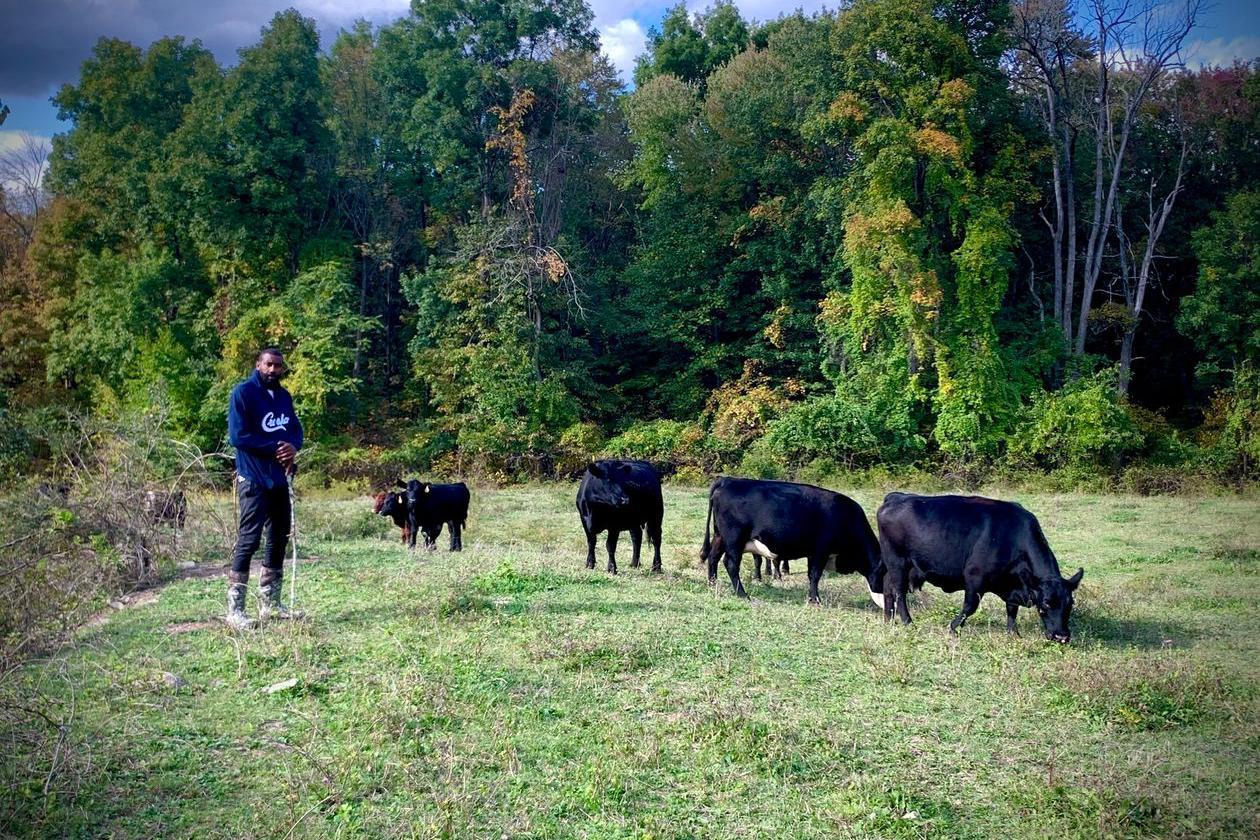 赛季结束 篮网助教斯塔德迈尔返回8万平农场:放牛砍柴种地样样通