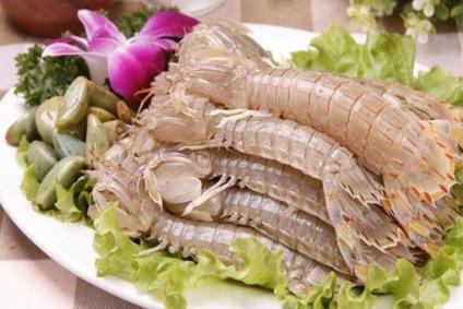 都是皮皮虾,为啥泰国的那么大而我国的那么小,原因可能你想不到