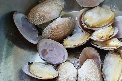 """孩子的专属""""补品""""——蛤蜊蒸蛋,零基础也能做出的颜值美味"""