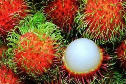 """全世界""""最奢侈""""的4种水果,车厘子榜上无名,每一个吃着都心疼"""