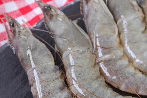 为啥饭店里的白灼虾,吃起来口感弹脆,还没有腥味?其实很简单