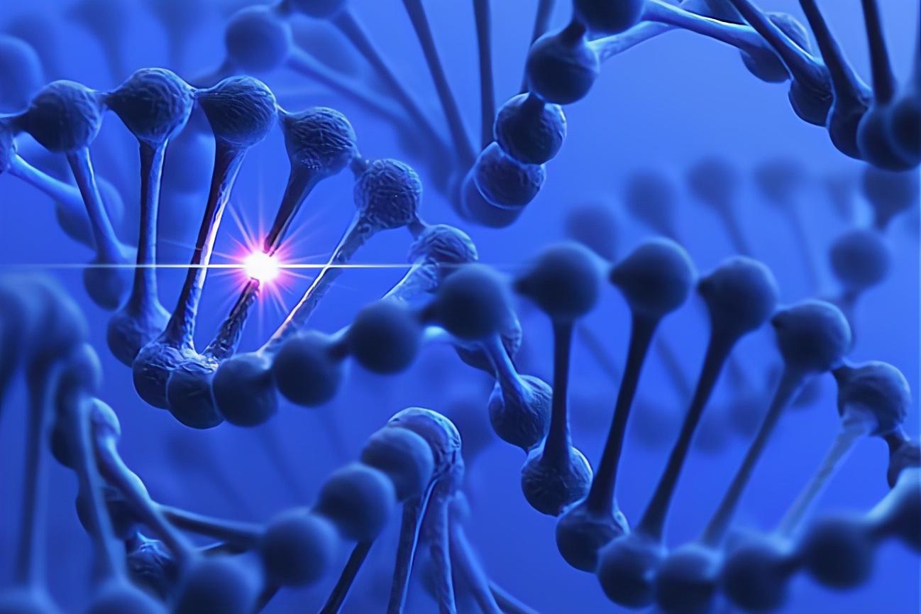 量子力学揭示了进化的秘密:一种特殊的量子效应可以导致基因突变