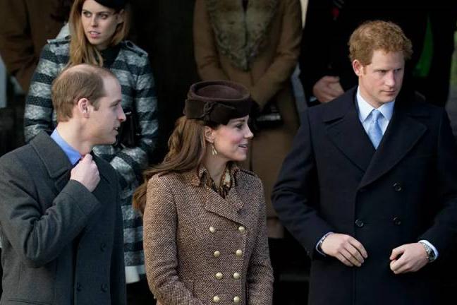 作家:担心梅根泄露,威廉夫妇没在菲利普亲王葬礼上和哈里说话
