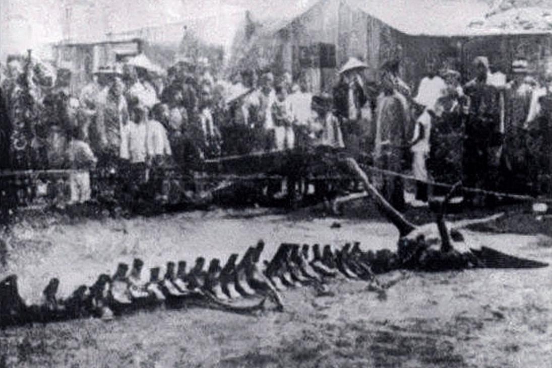 Sự thật việc chân long giáng thế ở Liêu Ninh năm 1934