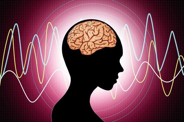 保护脑细胞和神经哪个更好?一文读懂