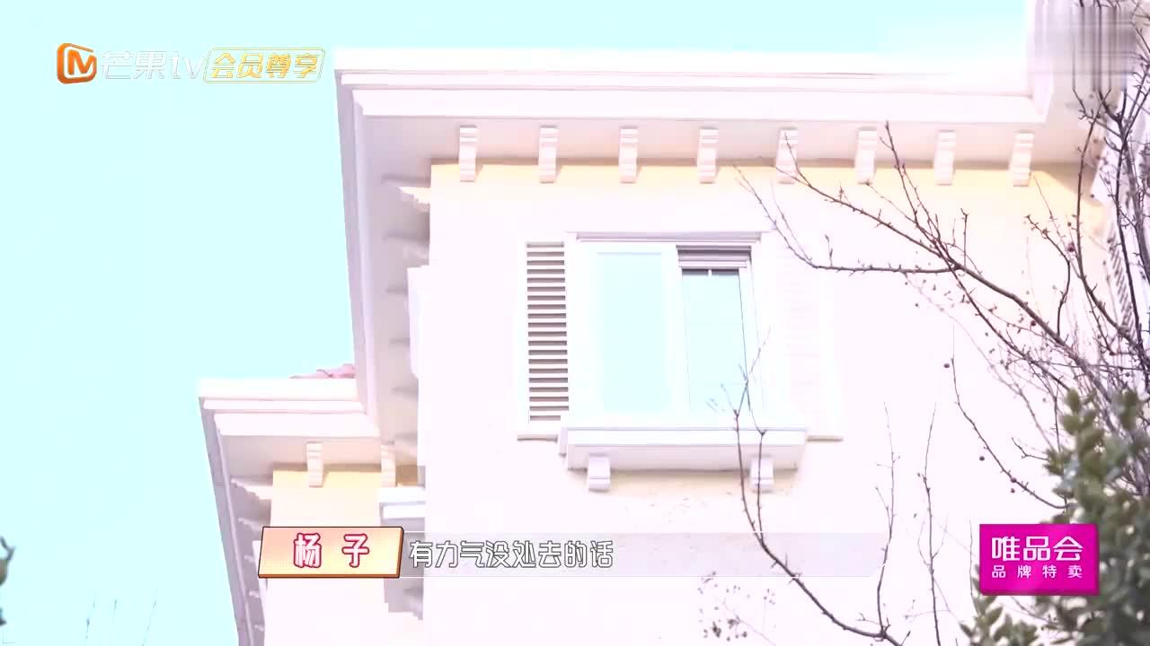 """黄圣依带两个儿子体验""""养""""猪的快乐!这可能就是有钱人的快乐!"""