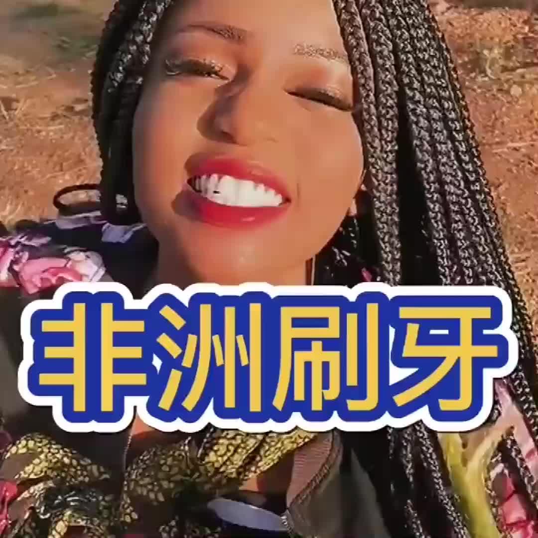 看看非洲人刷牙,竟然用这个刷,牙齿的质量也太好了吧!