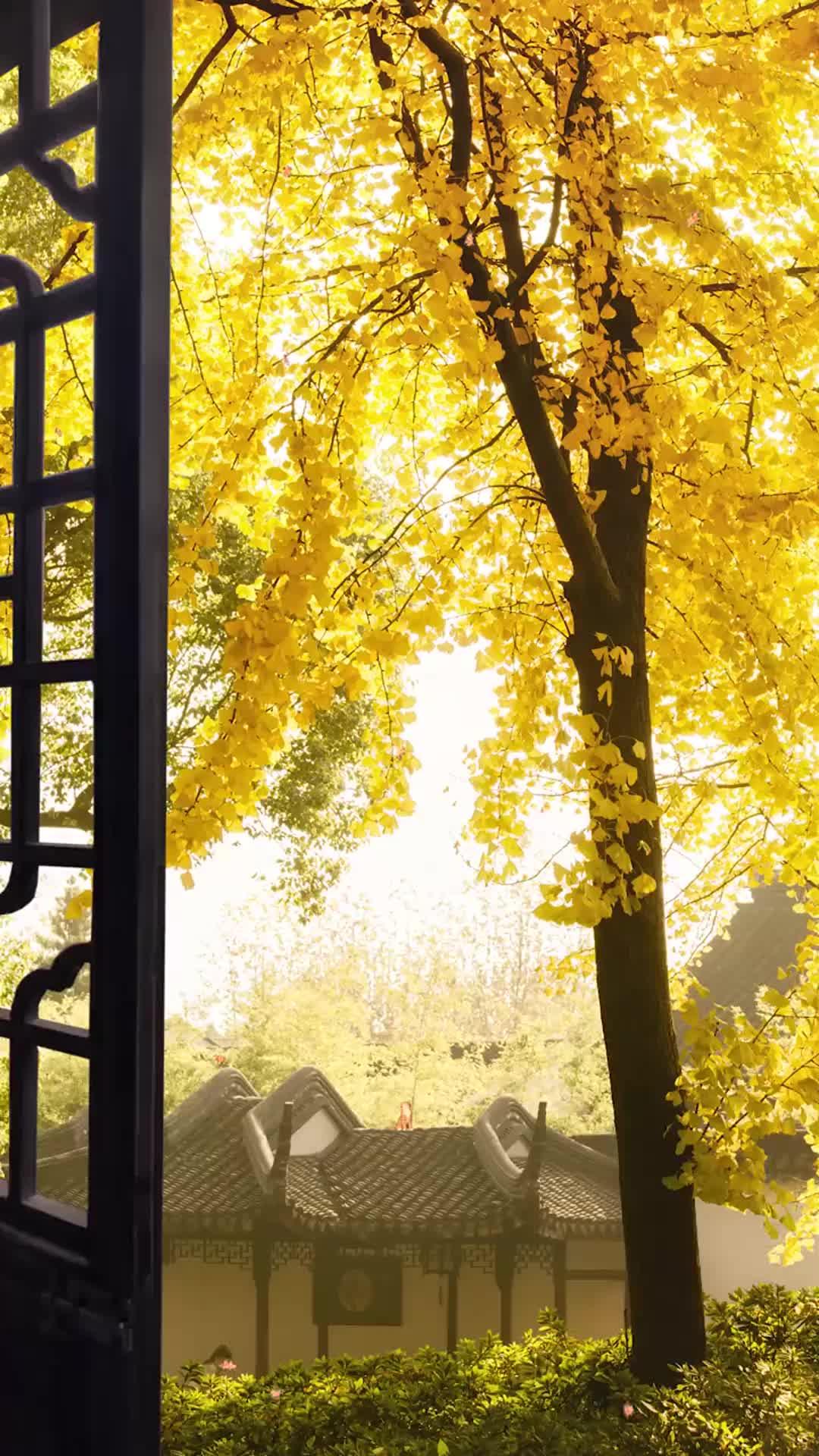 最近大热的一首《DJCandy&艺涛-夜色》饱含深情,深入人心