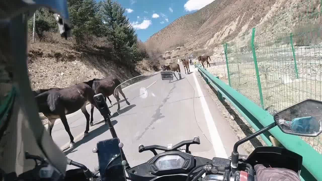 摩旅西藏路上,藏族大哥邀请我吃一口他家的牦牛肉,嗯真香!