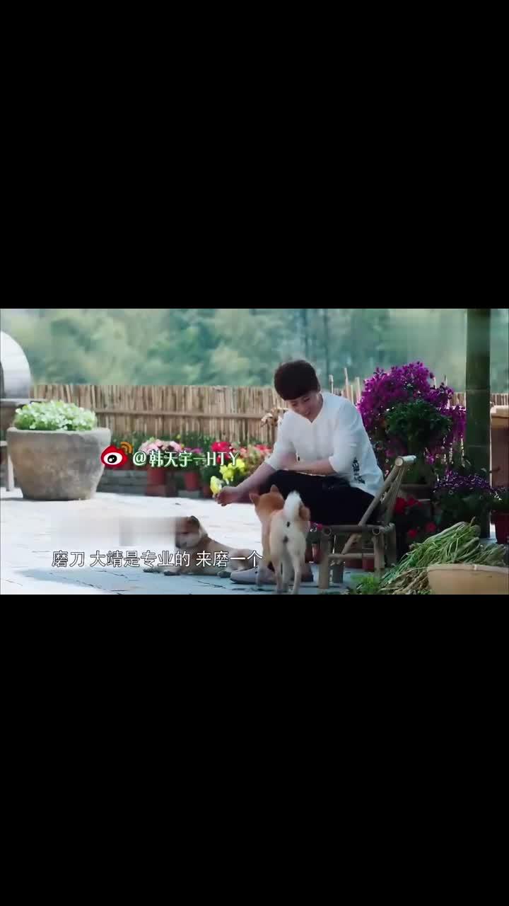 刘国梁给梅干菜撒盐,一句上旋下旋,秒变打乒乓球现场