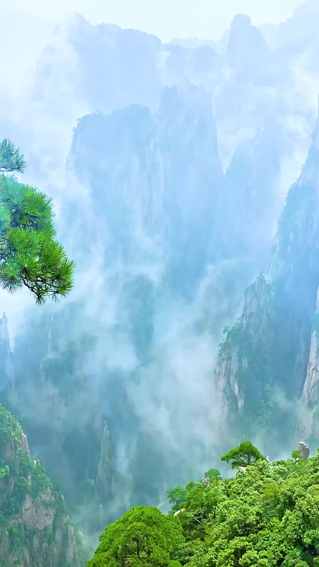 一首好歌《李荣浩-爸爸妈妈》句句戳心,情不自禁一起唱起来了