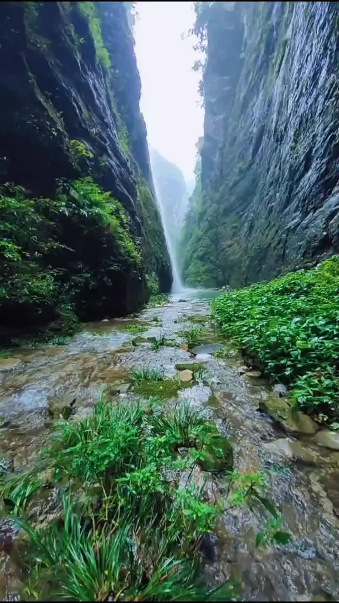 一首怀旧经典《周深-我爱你中国》韵味十足,只听一遍就爱上