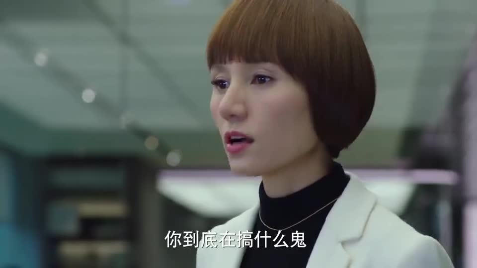 陈俊生爱上女下属,唐晶得知后当场怒怼!力挺罗子君