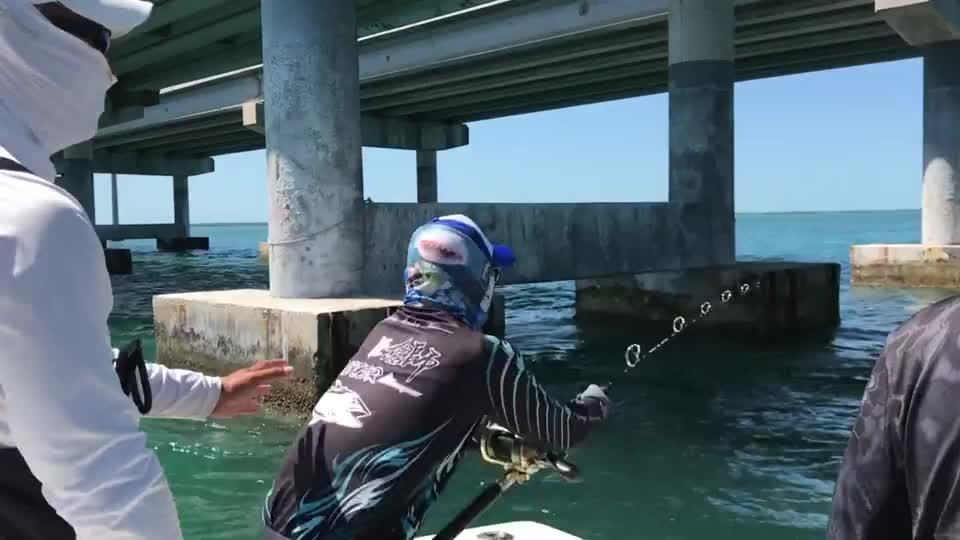 全世界最难钓的鱼,短短几分钟为何用尽所有力气