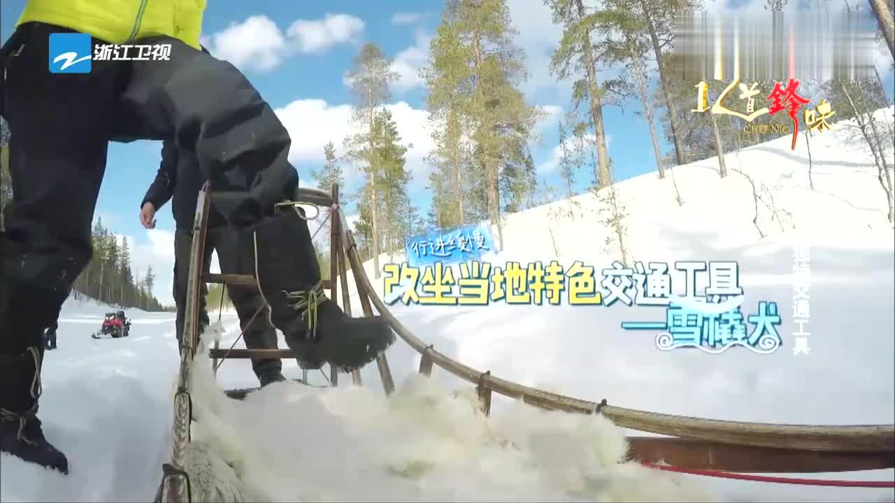 霍汶希体验狗拉雪橇,不料便便飞进嘴里,脸色瞬间大变