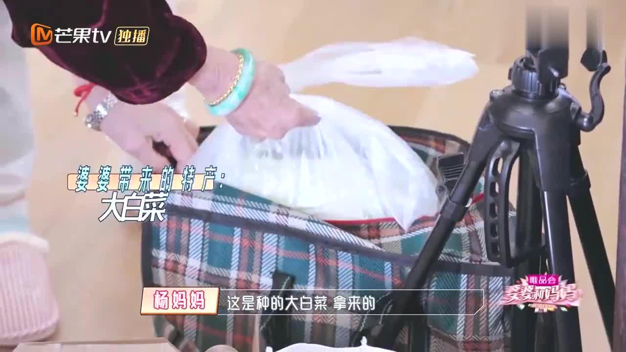 黄圣依杨子首次下厨,结果看到这堆食材后,两人四目相对彻底傻眼