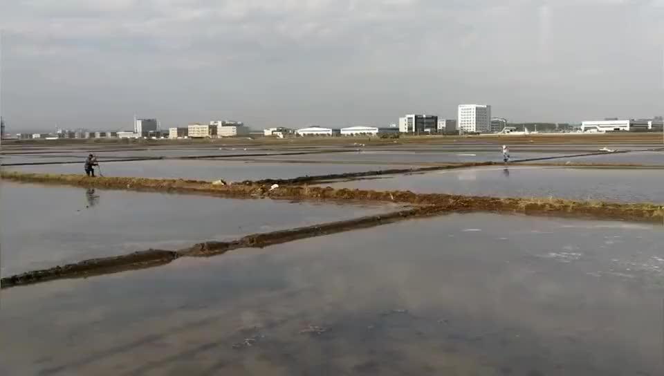 东北农田注水灌溉 俯瞰如水墨画卷