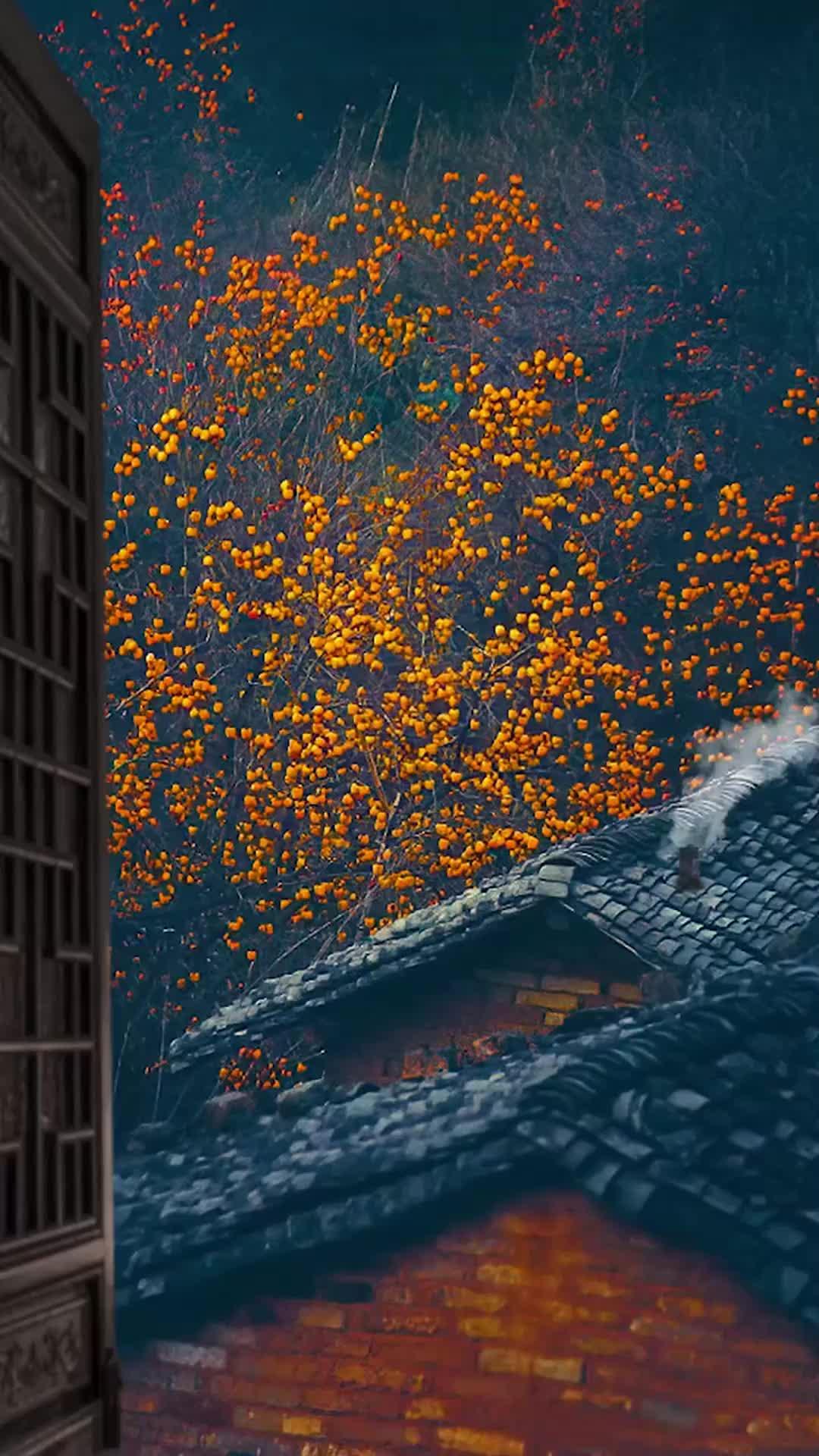 一曲经典的《刘德华-情感的禁区》如同山涧潺潺流水,盈盈悦耳