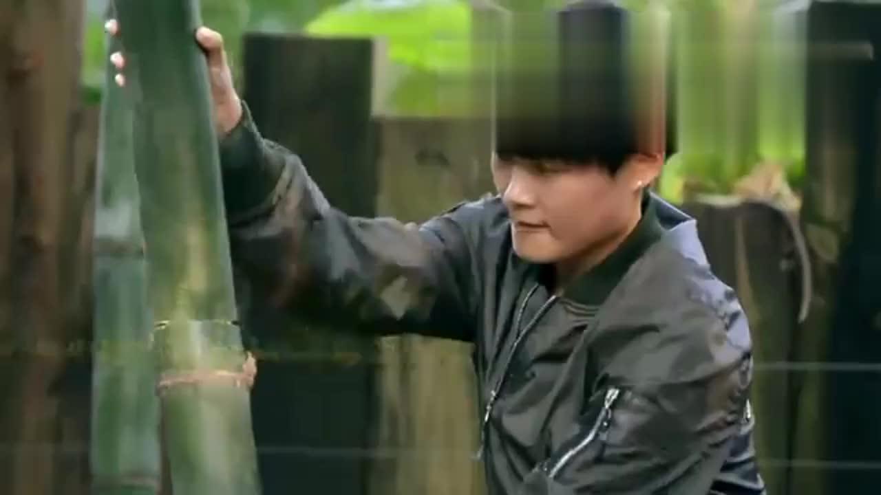 李宇春节目中砍竹子,竟耍起小李飞刀,没想到你是这样的无价之姐