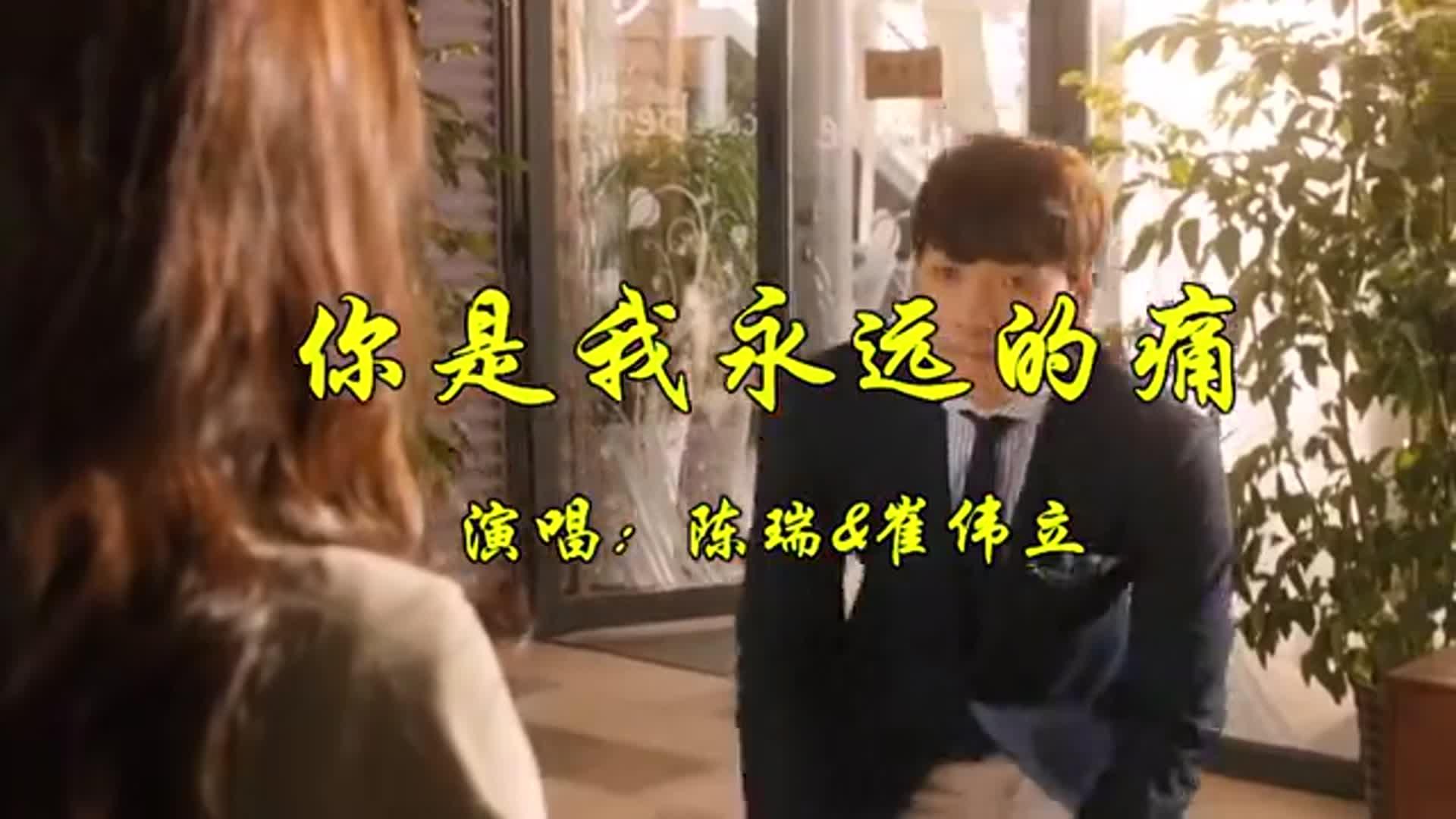 陈瑞崔伟立经典老歌《你是我永远的痛》,伤感的旋律声声