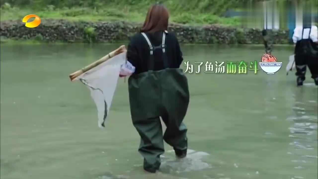 容祖儿陈乔恩王丽坤宋茜去抓鱼,美女们的抓鱼能力让人刮目相看