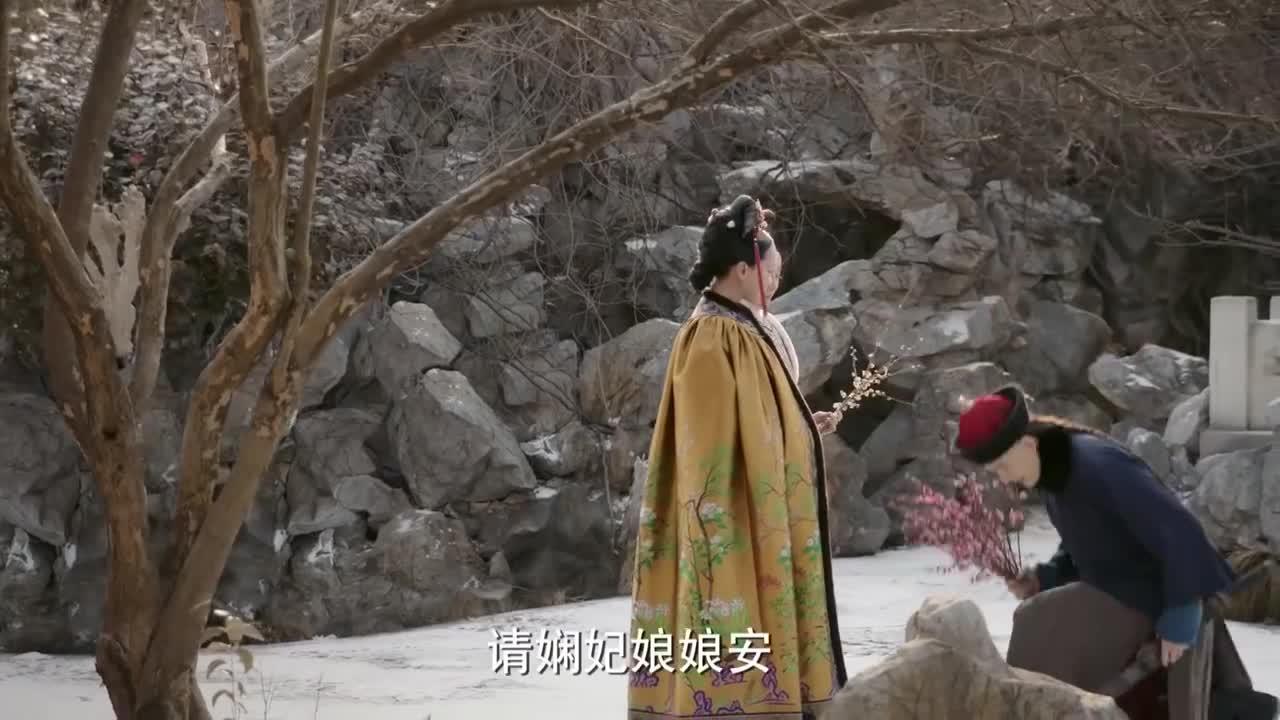 如懿传:凌云彻特地摘红梅给如懿请安,原来是为了卫嬿婉