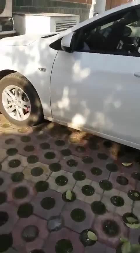 视频:街拍科沃兹!