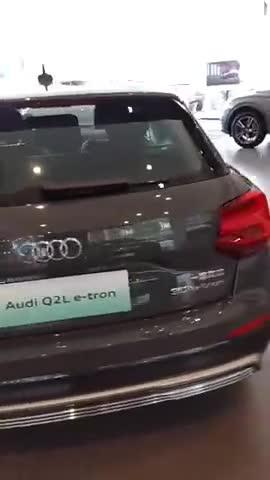视频:奥迪q2l新能源