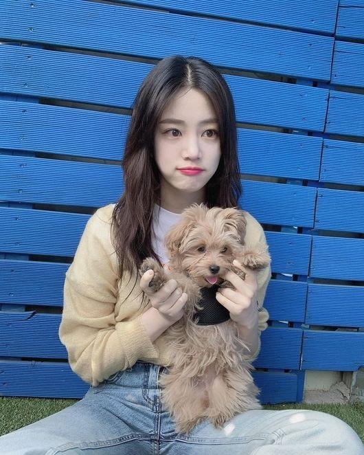 李侑菲和小狗一起公开可爱的近况镜头