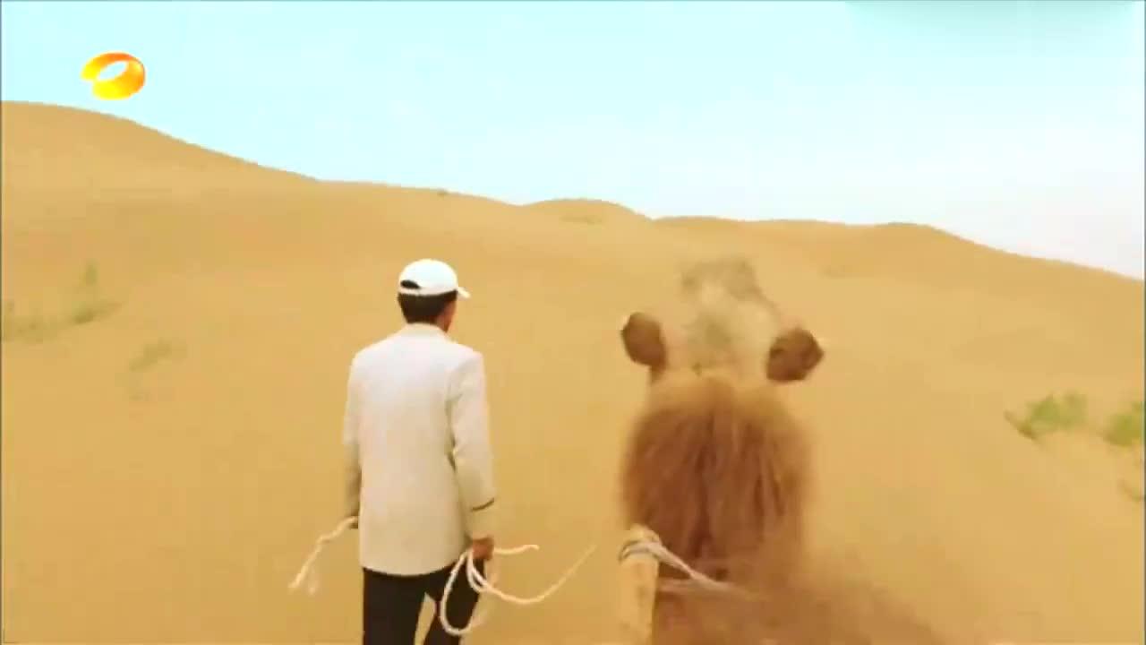 新闻当事人:林志颖带Kimi买菜,Kimi上来就砍价,奶声太可爱!
