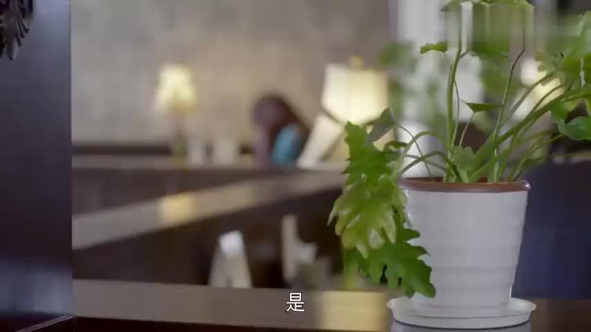 爱的追踪:晓阳的金融事业被坑,但他却仍不相信被骗