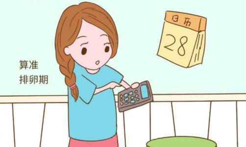 找准排卵日的2个方法
