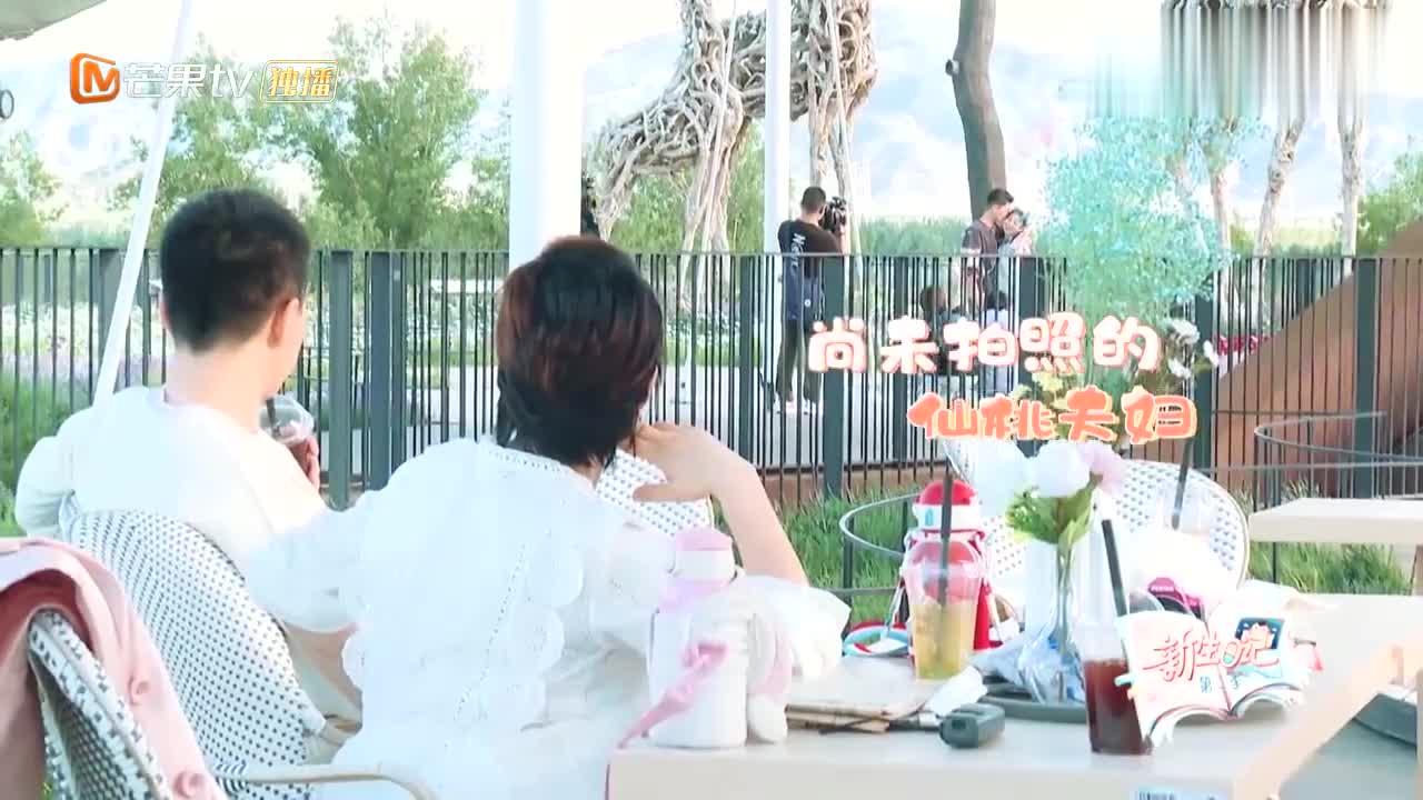 """""""告白气球""""中年版,刘璇变""""拍照杀手"""",王弢实在看不下去!"""