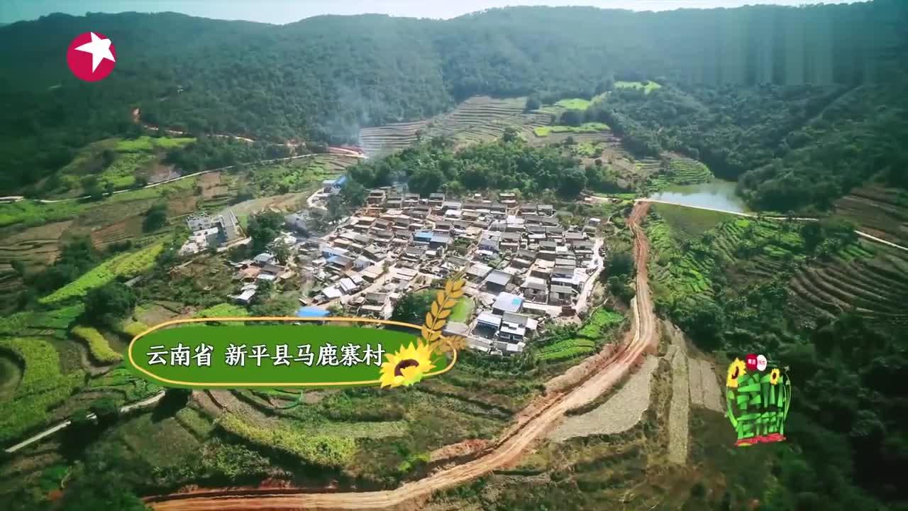 我们在行动:钟汉良用相机记录马鹿寨村原生态环境,网友:真棒!