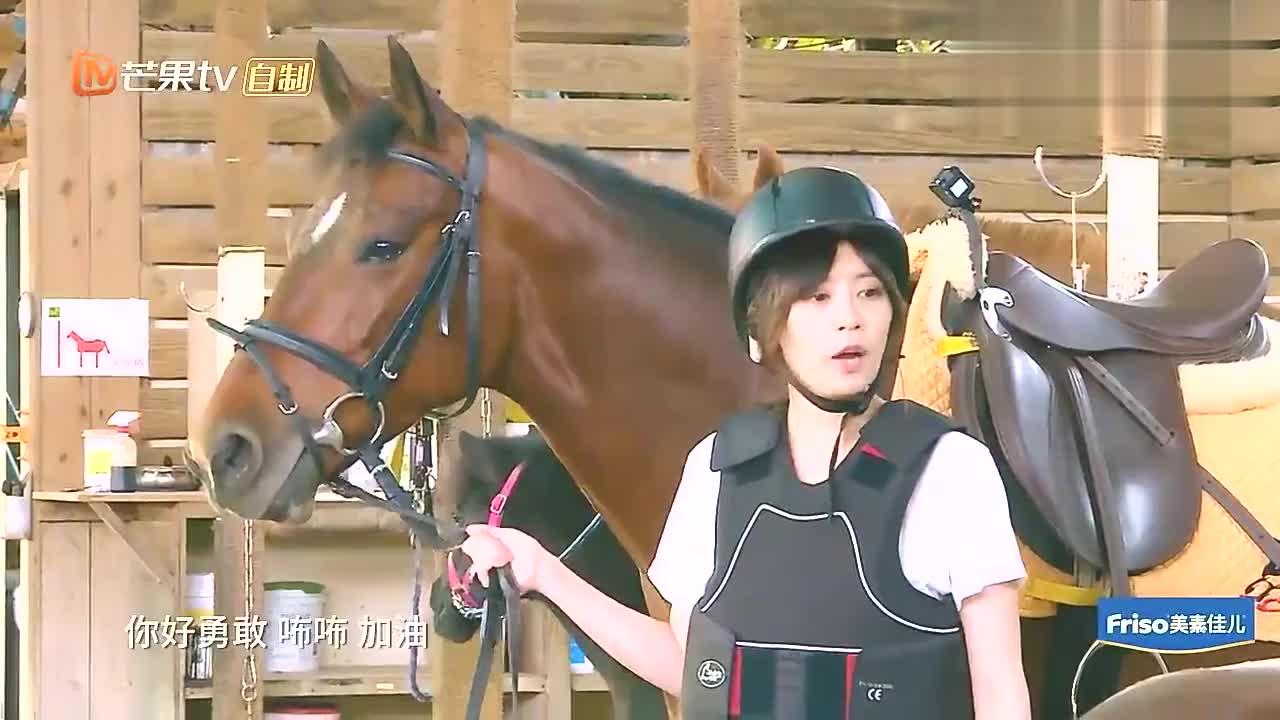 本以为贾静雯骑马就够帅气,直到抱上波妞后,妥妥的帅气可爱并存