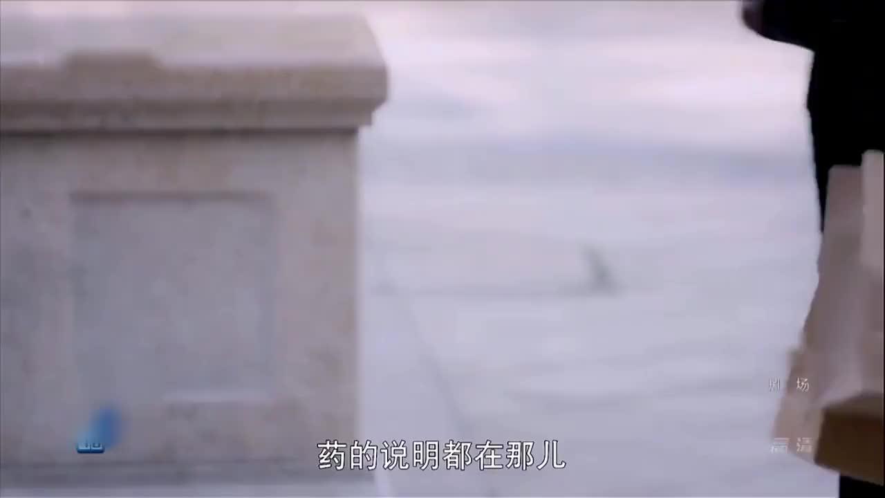 漂洋过海:郑楚给唐父做营养膳食,为了缓解唐氏父子矛盾