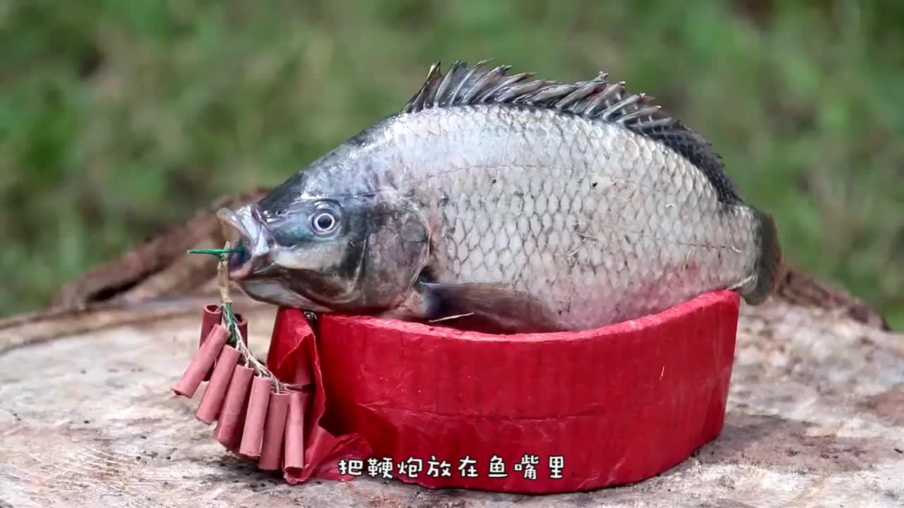 鞭炮炸鱼,一炮就是一条,这种捕鱼技术还真是第一次见!