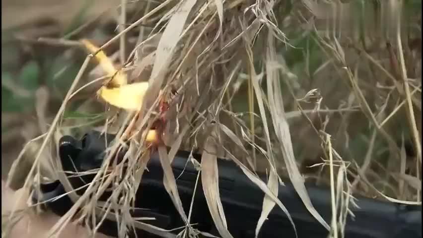 影视:蒋小鱼来了一个火烧赤壁,这个伏地魔乖乖现身