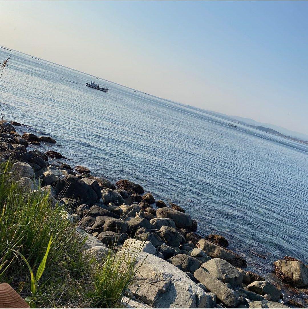 姜惠元、安宥真和张元英的清爽海滩自拍就像夏日的微风一样甜美