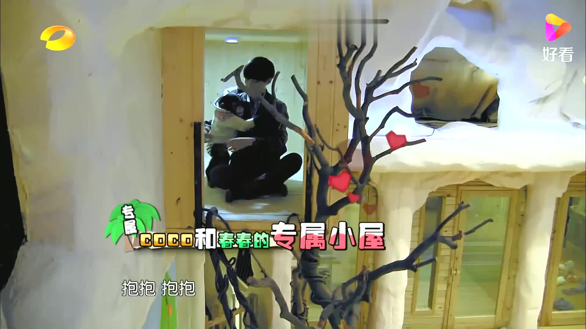 李宇春从高高的树上爬下来,吓的倪妮紧紧扶住树丨奇妙的朋友