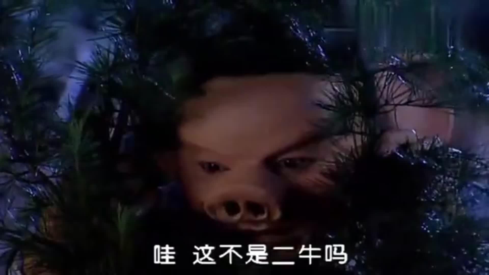 春光灿烂:嫦娥主动索拥抱,八戒正开心,结果下秒却变成猪头