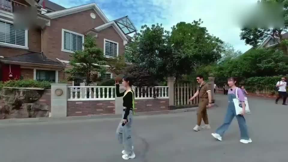 中餐厅4:赵丽颖在街上嘚瑟,过会儿被狗撵